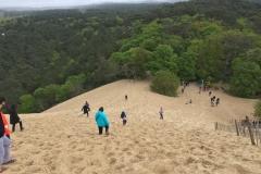 Walking down in the sand at Dune du Pilat